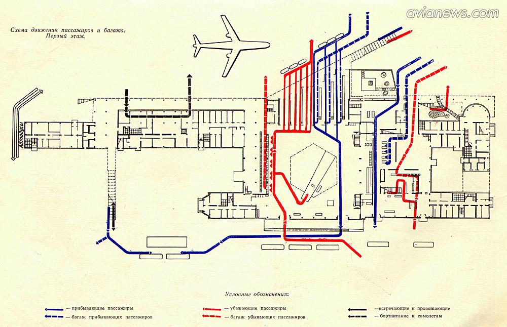 Схема терминала аэропорта