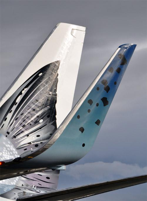 Рыбная ливрея отображает роль моря в экономической жизни Аляски. Кроме того, каждый год самолеты Alaska Airlines доставляют в магазины США, Канады и Мексики почти 11 млн. тонн морепродуктов