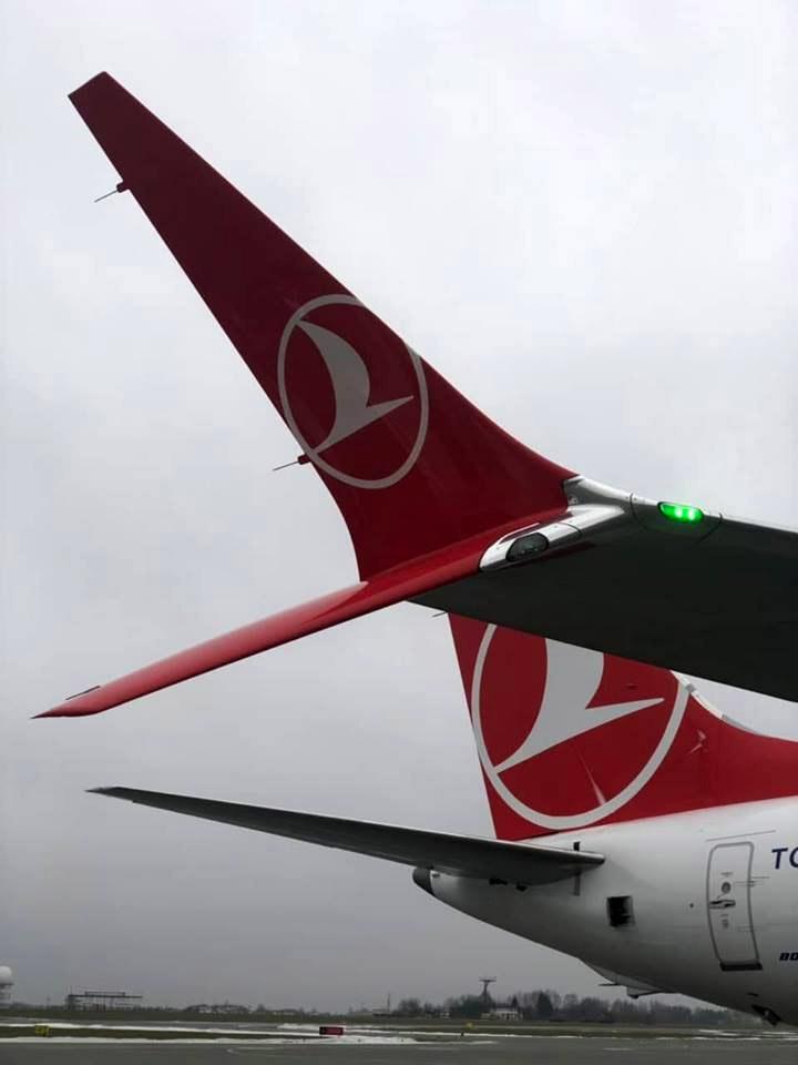 Специальные сдвоенные законцовки крыла на Boeing 737 MAX 8 Turkish Airloines. Фото: аэропорт Львов
