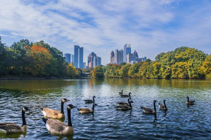 Атланта, США. Вид на центральную часть города с небоскребами