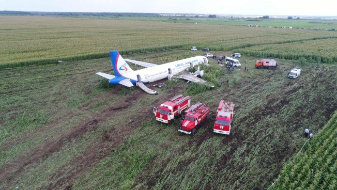 Пожарные машины около севшего на кукурузное поле Airbus A321