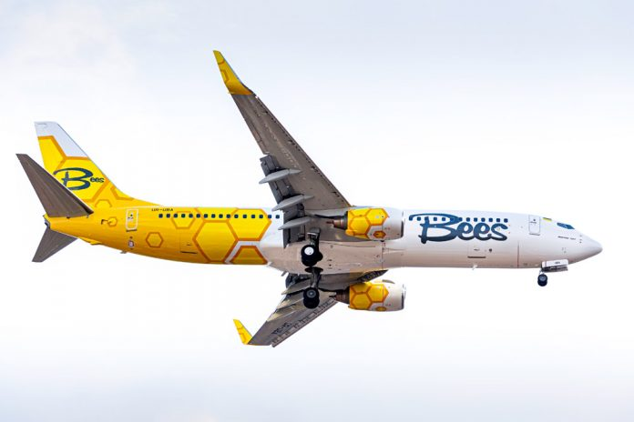 Boeing 737-800 Bees Airline
