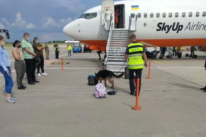 Проверка ручной клади пассажиров с помощью собак